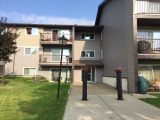 Main Photo: 224 15105 121 Street in Edmonton: Zone 27 Condo for sale : MLS® # E4077899