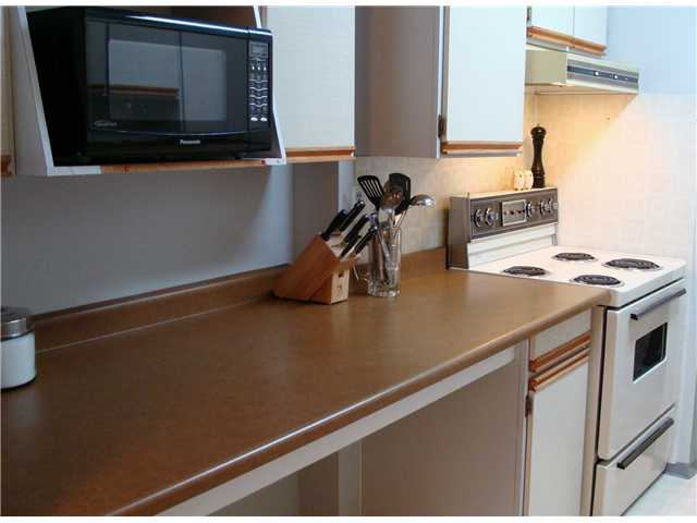 "Photo 8: 320 8880 NO 1 Road in Richmond: Boyd Park Condo for sale in ""APLLE GREENE"" : MLS® # V898589"