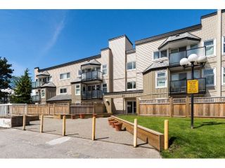 "Main Photo: 317 1850 E SOUTHMERE Crescent in Surrey: Sunnyside Park Surrey Condo for sale in ""Southmere Place"" (South Surrey White Rock)  : MLS® # R2232555"