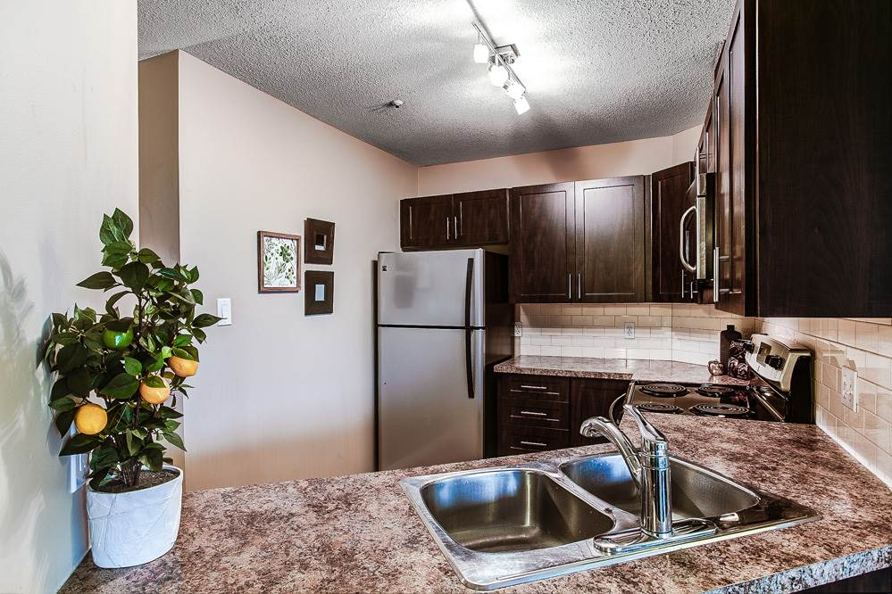 Photo 4: 114 11595 FRASER Street in Maple Ridge: East Central Condo for sale : MLS® # R2146749