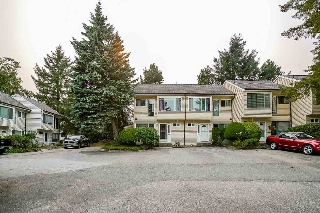 "Main Photo: 47 9380 128 Street in Surrey: Queen Mary Park Surrey Townhouse for sale in ""SURREY MEADOWS"" : MLS® # R2193040"