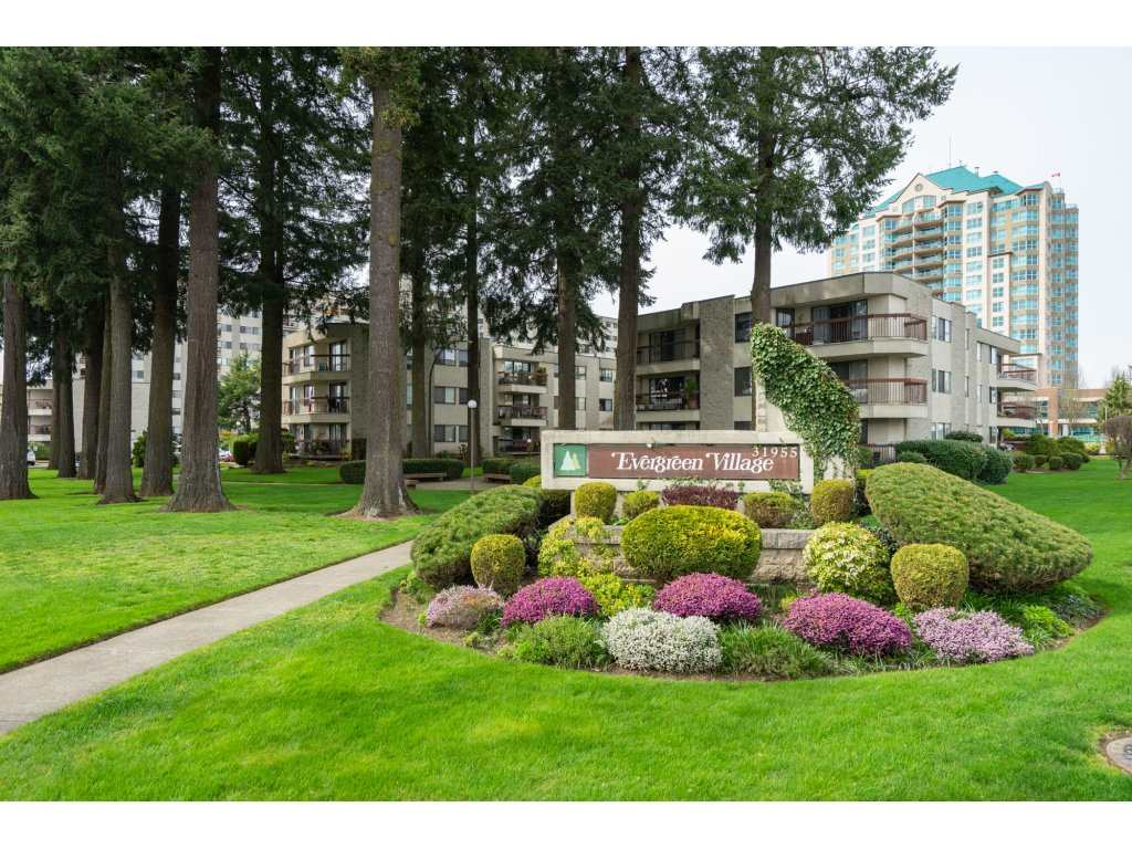 "Main Photo: 133 31955 OLD YALE Road in Abbotsford: Abbotsford West Condo for sale in ""Evergreen Village"" : MLS®# R2254273"