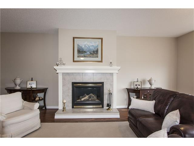 Gas fireplace in lower family room