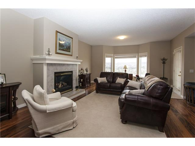 Lower Family Room with gas fireplace