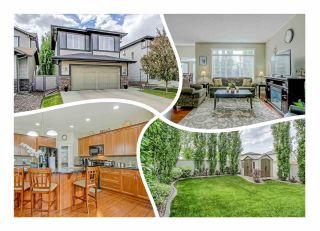 Main Photo: 9566 219A Street in Edmonton: Zone 58 House for sale : MLS®# E4129680
