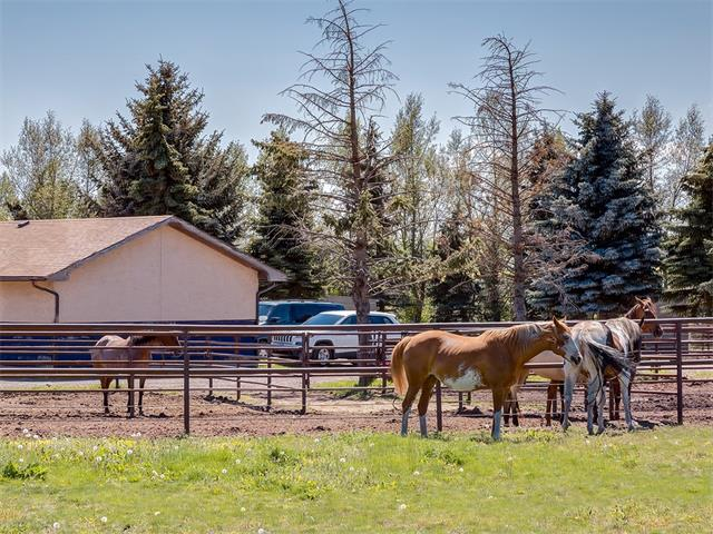 Photo 36: 354132 48 Street E: Rural Foothills M.D. House for sale : MLS(r) # C4096683