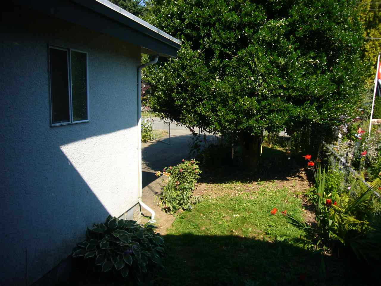Photo 5: 34272 CATCHPOLE Avenue in Mission: Hatzic House 1/2 Duplex for sale : MLS® # R2184697