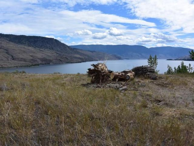 Photo 3: Photos: LOT 21 HARE ROAD in : Cherry Creek/Savona Lots/Acreage for sale (Kamloops)  : MLS® # 135525