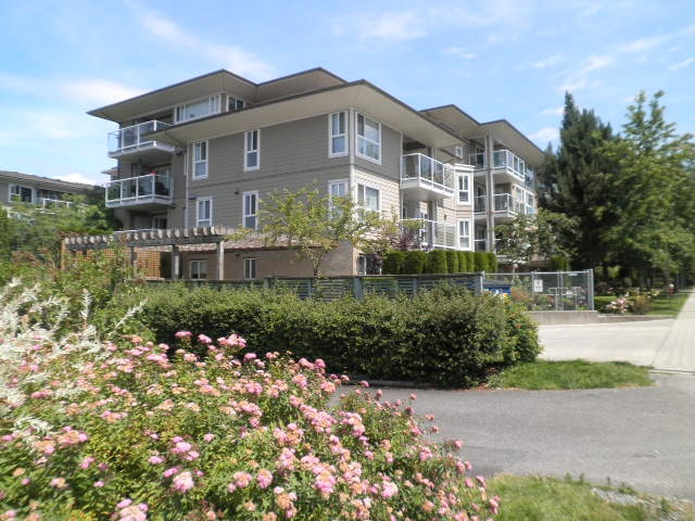 Main Photo: 206 22255 122 Avenue in Maple Ridge: West Central Condo for sale : MLS® # R2086650
