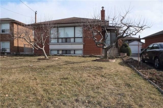 Main Photo: Main Fl 113 Lawnside Drive in Toronto: Rustic House (Bungalow) for lease (Toronto W04)  : MLS®# W3761168