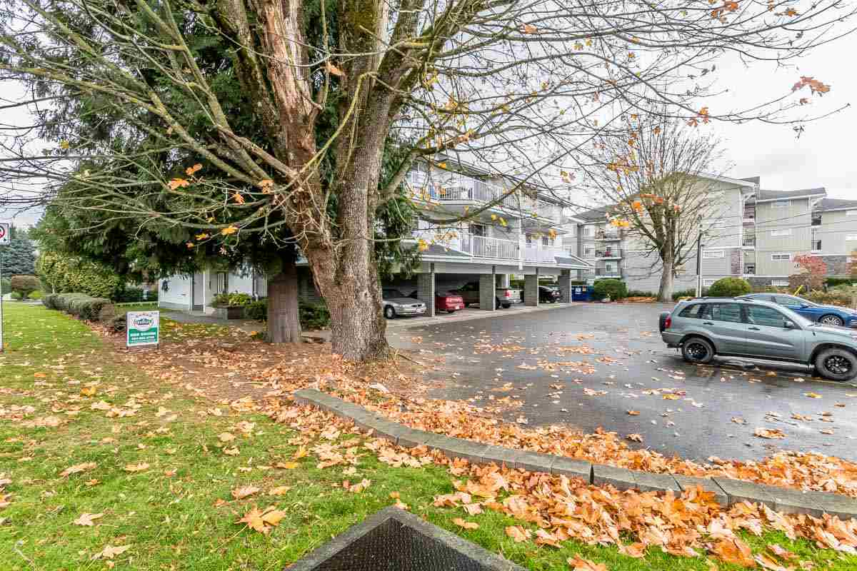 "Main Photo: 205 33225 OLD YALE Road in Abbotsford: Central Abbotsford Condo for sale in ""CEDAR GROVE ESTATES"" : MLS® # R2218353"
