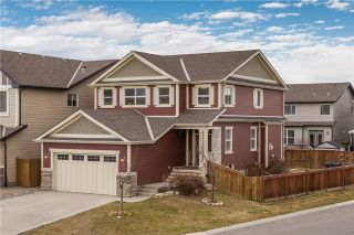 Main Photo: 73 CHAPARRAL VALLEY Grove SE in Calgary: Chaparral House for sale : MLS® # C4144062
