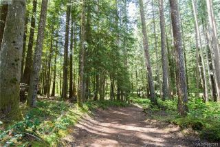 Main Photo: Lot A West Shawnigan Lake Road in SHAWNIGAN LAKE: ML Shawnigan Lake Land for sale (Malahat & Area)  : MLS® # 387571
