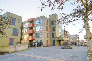 Main Photo: 203 12075 228 Street in Maple Ridge: East Central Condo for sale : MLS® # R2247024