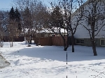 Main Photo: 12017 58 Street in Edmonton: Zone 06 Vacant Lot for sale : MLS® # E4055342