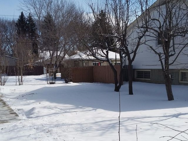 Main Photo: 12017 58 Street in Edmonton: Zone 06 Vacant Lot for sale : MLS(r) # E4055342