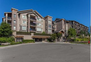 "Main Photo: 212 5655 210A Street in Langley: Salmon River Condo for sale in ""CORNERSTONE NORTH"" : MLS®# R2220601"