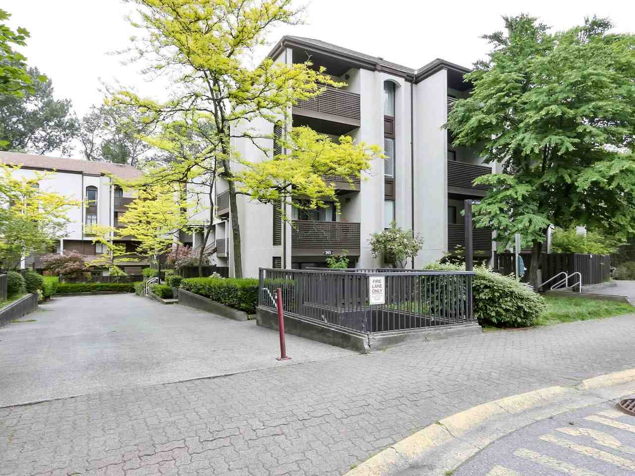 FEATURED LISTING: 15 - 365 GINGER Drive New Westminster
