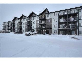 Main Photo: 420 508 Albany Way NW in Edmonton: Zone 27 Condo for sale : MLS(r) # E3402544
