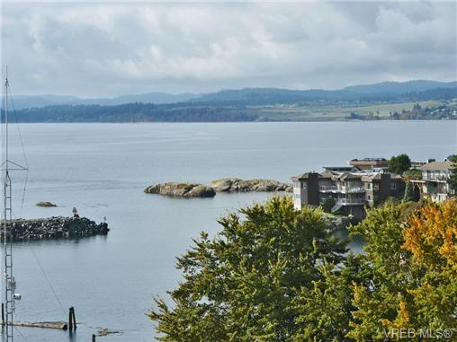 Photo 3: 318 Clifton Terrace in VICTORIA: Es Saxe Point Single Family Detached for sale (Esquimalt)  : MLS(r) # 357253