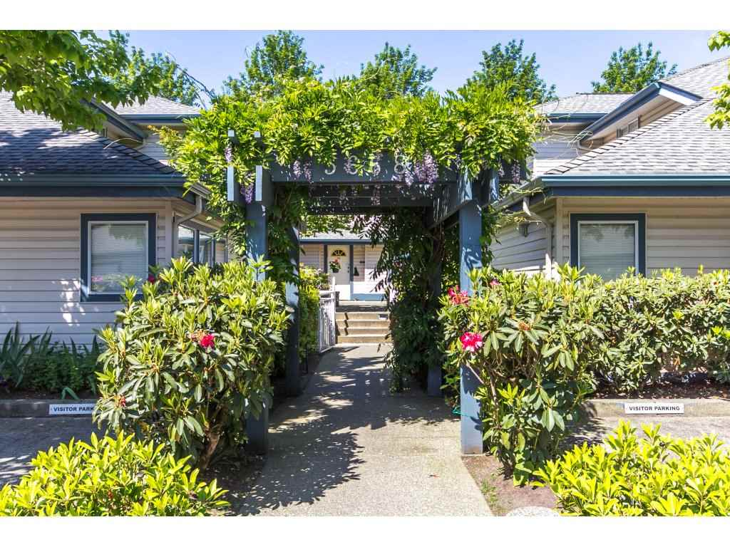 Main Photo: 33 5668 208 Street in Langley: Langley City Townhouse for sale : MLS® # R2170003