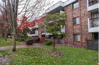 "Main Photo: 305 8770 LAUREL Street in Vancouver: Marpole Condo for sale in ""Villa Marine"" (Vancouver West)  : MLS®# R2319641"