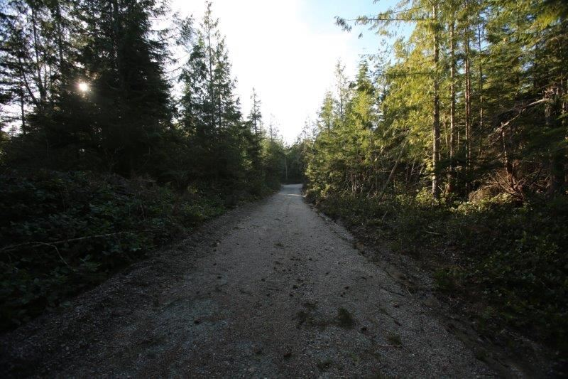Photo 18: Photos: 5980 SECHELT INLET Road in Sechelt: Sechelt District House for sale (Sunshine Coast)  : MLS® # R2045230