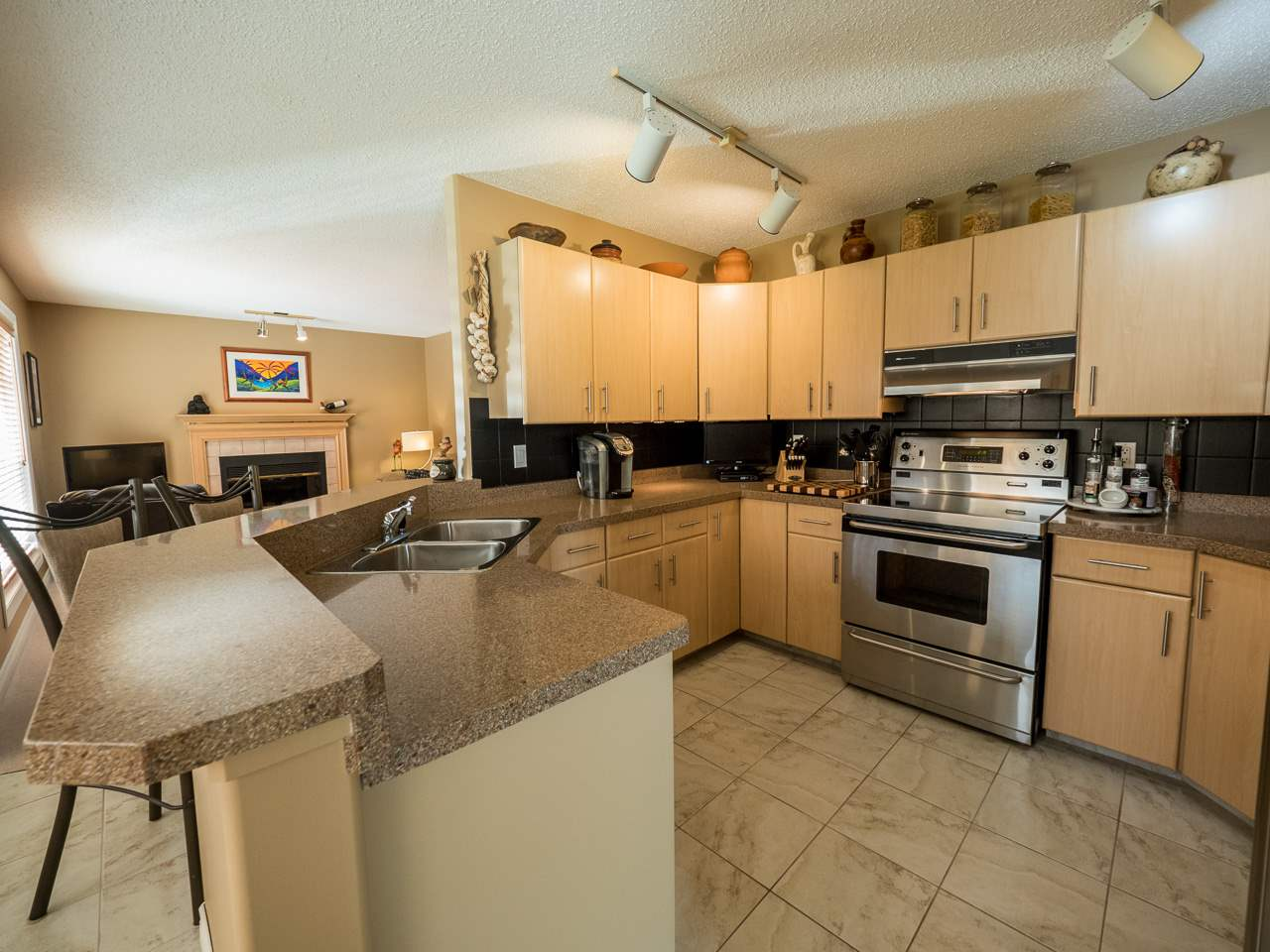 Photo 8: 205 WEBER Place in Edmonton: Zone 20 House for sale : MLS® # E4077601