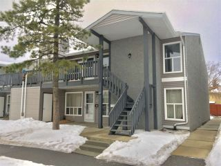 Main Photo:  in Edmonton: Zone 29 Carriage for sale : MLS® # E4089432