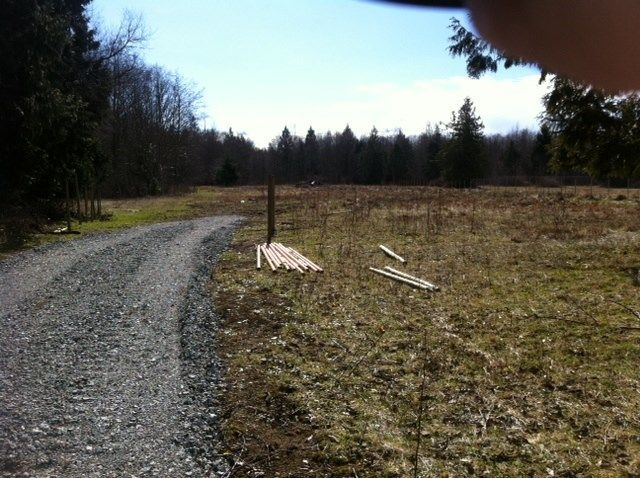 Photo 8: Photos: LOT 17 INGLIS Road in Gibsons: Gibsons & Area Home for sale (Sunshine Coast)  : MLS® # R2227805
