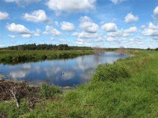 Main Photo: Rge Rd 214@N TWP 624: Rural Thorhild County Rural Land/Vacant Lot for sale : MLS®# E4110255