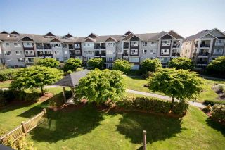 "Main Photo: 333 19673 MEADOW GARDENS WAY in Pitt Meadows: North Meadows PI Condo for sale in ""The Fairways"" : MLS®# R2268438"