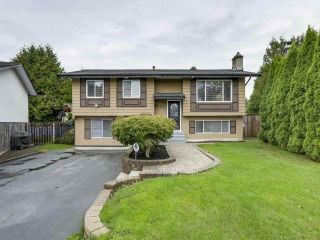 Main Photo: 4892 205 Street in Langley: Langley City House for sale : MLS®# R2309161