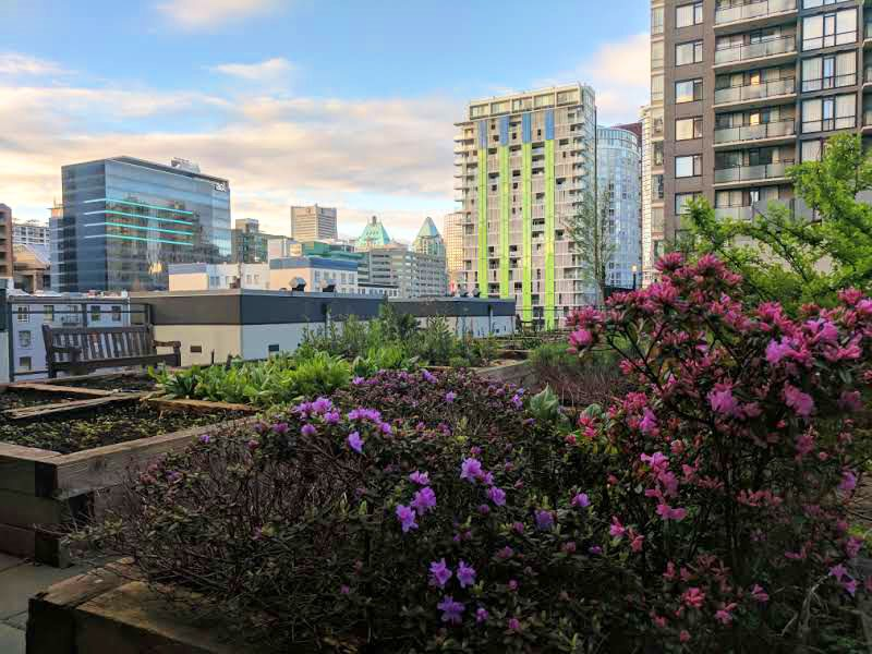 "Main Photo: 1210 1082 SEYMOUR Street in Vancouver: Downtown VW Condo for sale in ""FREESIA"" (Vancouver West)  : MLS® # R2157817"