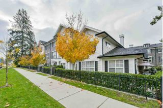 "Main Photo: 43 2469 164 Street in Surrey: Grandview Surrey Townhouse for sale in ""Abbey Road"" (South Surrey White Rock)  : MLS® # R2221526"