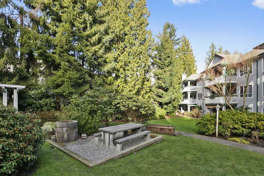 "Photo 20: Photos: 205 1150 LYNN VALLEY Road in North Vancouver: Lynn Valley Condo for sale in ""The Laurels"" : MLS® # R2245037"