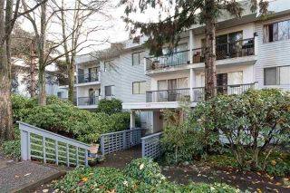 "Main Photo: 206 428 AGNES Street in New Westminster: Downtown NW Condo for sale in ""SHANLEY MANOR"" : MLS®# R2258514"