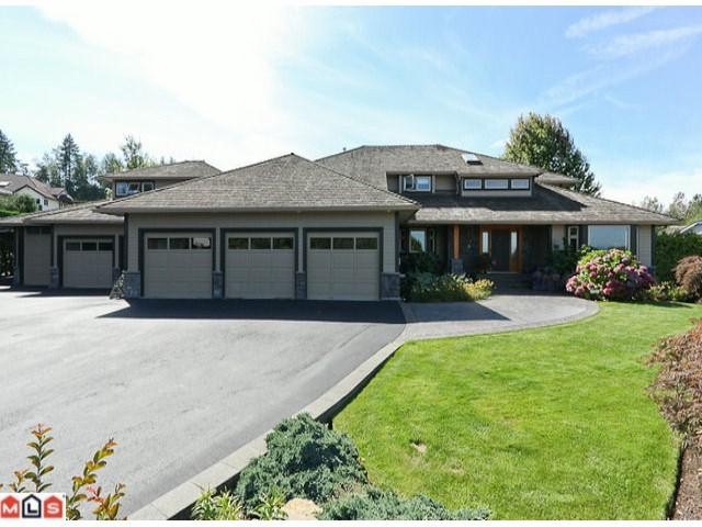 Main Photo: 20486 1ST Avenue in Langley: Campbell Valley House for sale : MLS® # F1114213