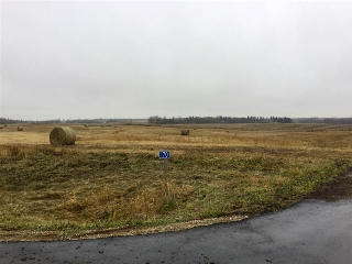 Main Photo: 170 50428 Range Road 234: Rural Leduc County Rural Land/Vacant Lot for sale : MLS® # E4042155