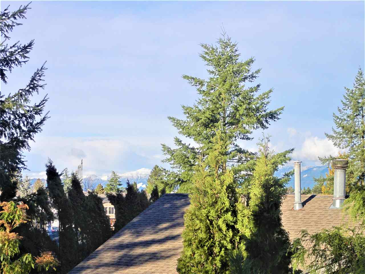 Photo 20: Photos: 3271 CHEAM Drive in Abbotsford: Abbotsford West House for sale : MLS® # R2244264