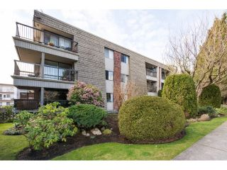 "Main Photo: 205 1355 FIR Street: White Rock Condo for sale in ""The Pauline"" (South Surrey White Rock)  : MLS® # R2249228"