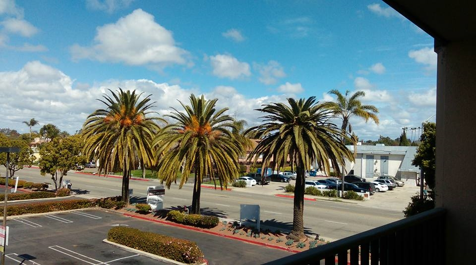 Main Photo: CHULA VISTA Condo for rent : 1 bedrooms : 490 4th AVE #34