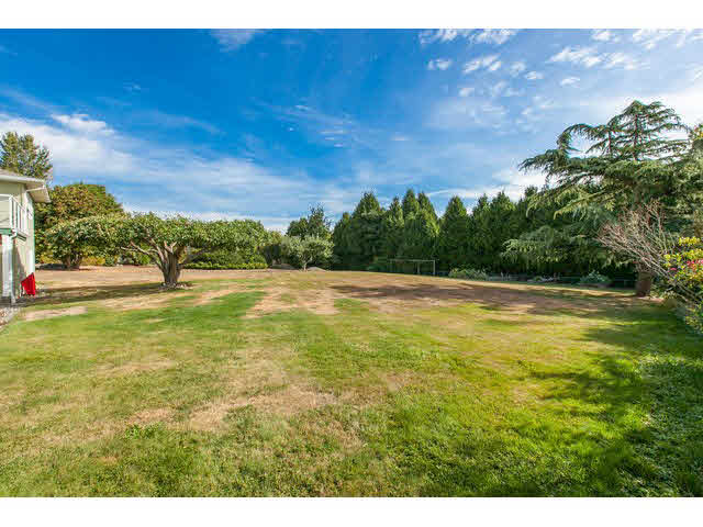 Photo 15: 2064 182 Street in Surrey: Hazelmere House for sale (South Surrey White Rock)  : MLS® # F1448623