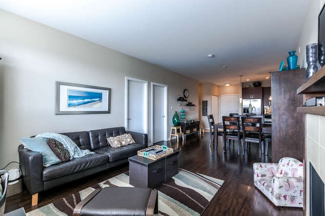 Photo 3: 309 288 HAMPTON Street in New Westminster: Queensborough Condo for sale : MLS® # R2141323