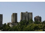Main Photo:  in Edmonton: Zone 12 Condo for sale : MLS® # E4063452