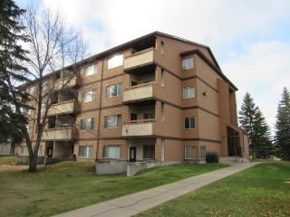 Main Photo: 301, 14816 - 26 Street NW in Edmonton: Condominium for rent