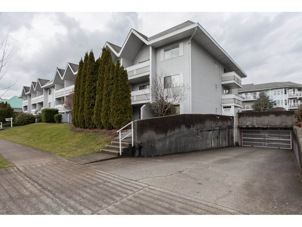 "Photo 19: 103 2055 SUFFOLK Avenue in Port Coquitlam: Glenwood PQ Condo for sale in ""Suffolk Manor"" : MLS(r) # R2142925"