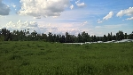 Main Photo: 22 51209 RGE RD 255 Road: Rural Parkland County Rural Land/Vacant Lot for sale : MLS(r) # E4056975