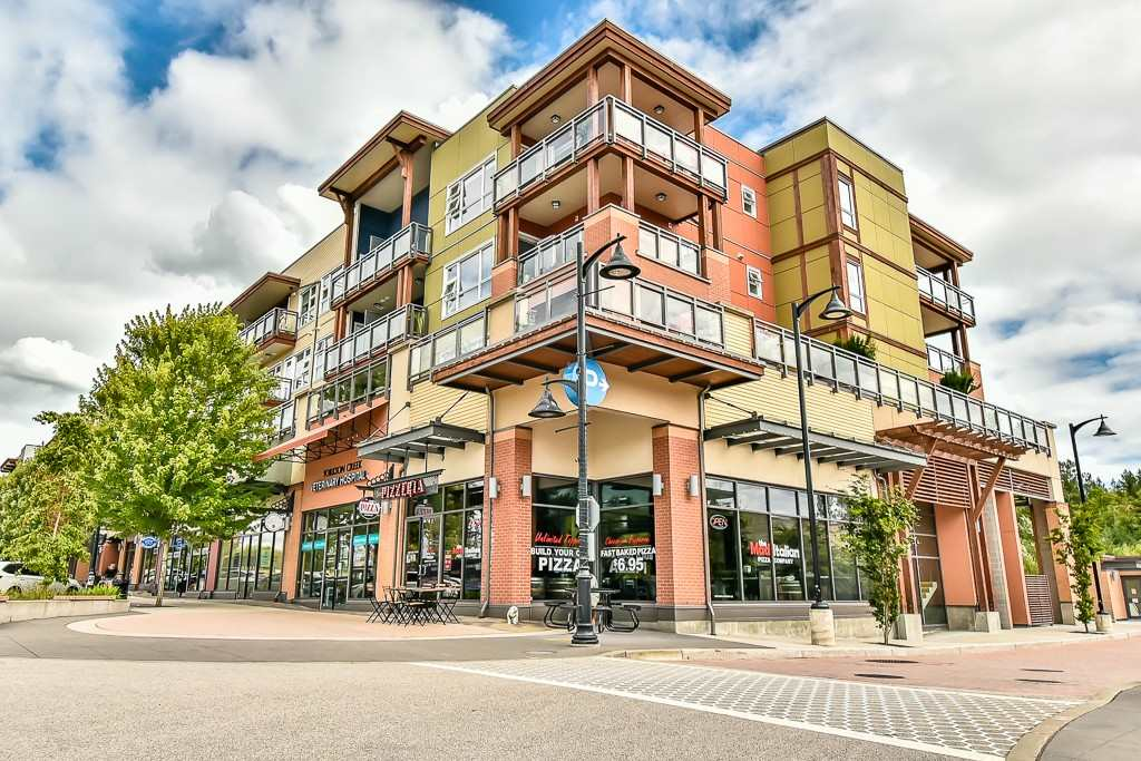 "Main Photo: 214 20728 WILLOUGHBY TOWN CENTRE Drive in Langley: Willoughby Heights Condo for sale in ""Kensington at Willoughby Town Centre"" : MLS(r) # R2190142"