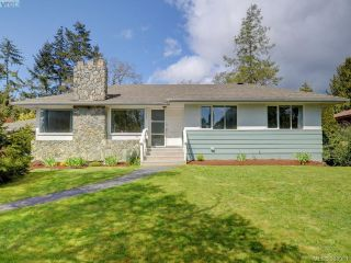 Main Photo: 3392 Henderson Road in VICTORIA: OB Henderson Single Family Detached for sale (Oak Bay)  : MLS®# 388981